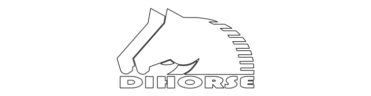 DIHORSE LLC